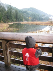 Exploring nature on a trip to Goldstream