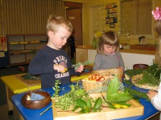 Exploring nature in the classroom