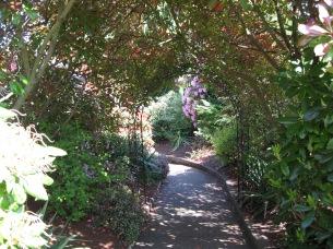 The walkway to the preschool