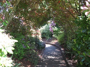 The walkway to the preschool